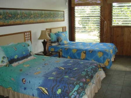 Two double beds in downstairs bedroom at Pualani Home, Kapoho, Hawaii