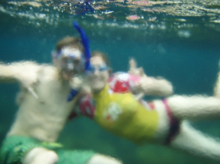 Snorkeling is so much fun in the Kapoho tide pools!