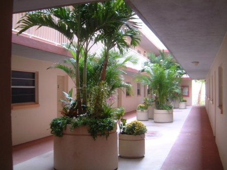 Tropical atrium outside condo door
