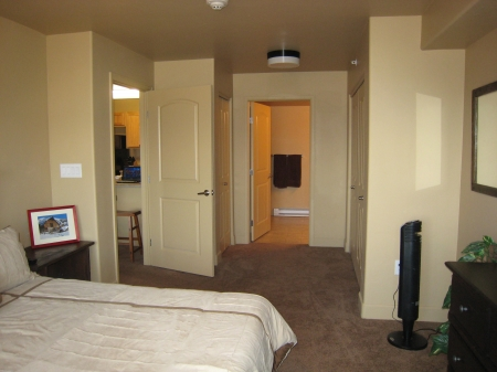 Master Bedroom with Two Closets on each side